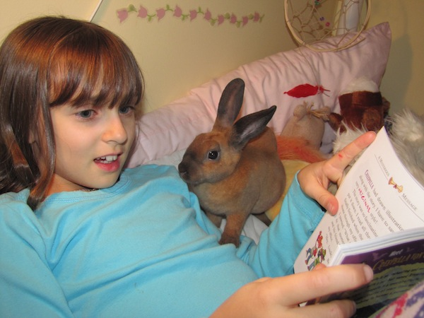 A child with her foster bunny